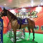 【有馬記念 予想】あの人気馬は特別出走奨励金目当てと見て切ります!