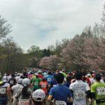 豊平川ハーフマラソンを無事完走 桜並木を眺めながらのランは最高