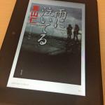 『雨に泣いてる』真山仁著 書評 東日本大震災を題材にしたミステリー